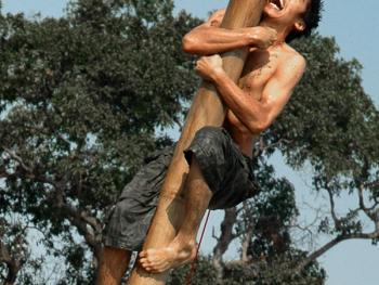 国庆日的爬槟榔树比赛07
