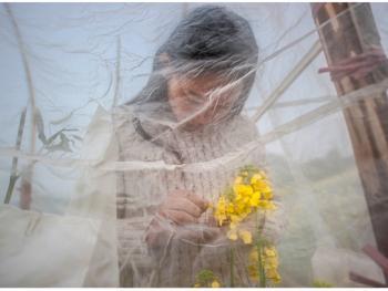 农民家庭育种04