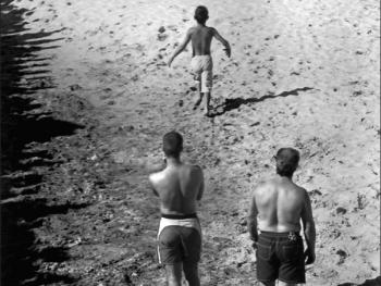 特茹河口的沙滩斗牛14