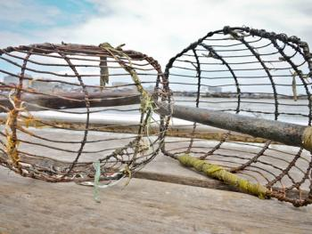 印尼挖蛤蜊05