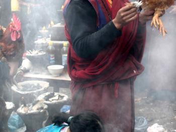 木雅藏族展佛节11