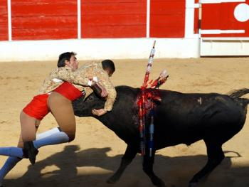 葡萄牙斗牛12