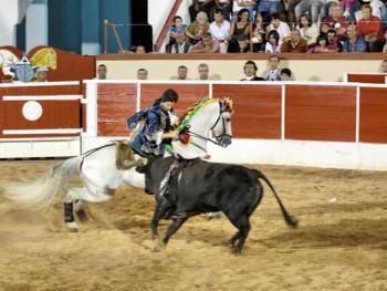 葡萄牙斗牛