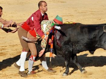葡萄牙斗牛13