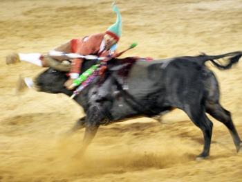 葡萄牙斗牛08