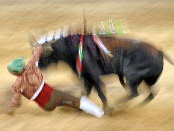 葡萄牙斗牛09