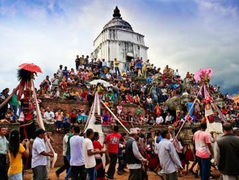 尼泊尔神牛节12