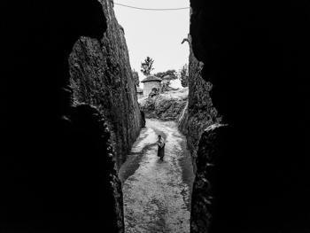 埃塞俄比亚提姆卡特14