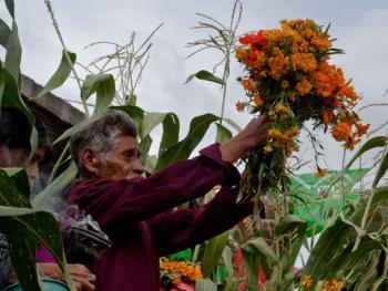 墨西哥玉米节