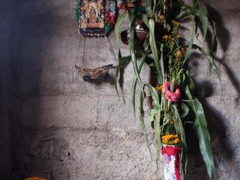 墨西哥玉米节10