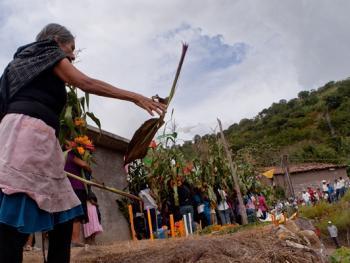墨西哥玉米节07