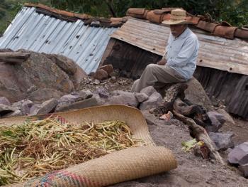 墨西哥玉米节09